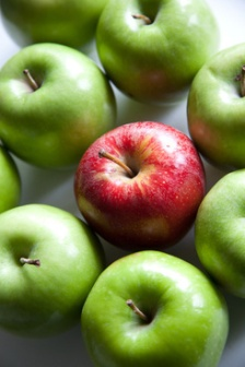 apples_stand_out_517283
